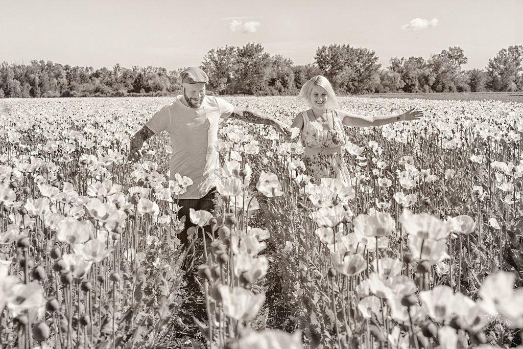 """White Poppies Field"""
