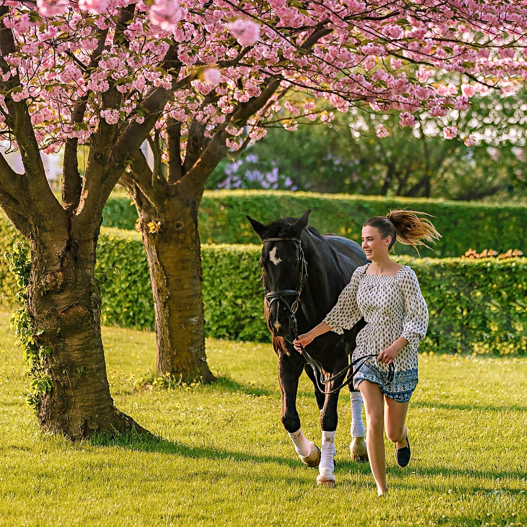 """Cherry Blossom Race"""