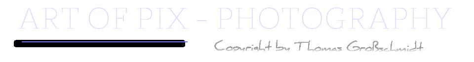 Art of Pix - Photography