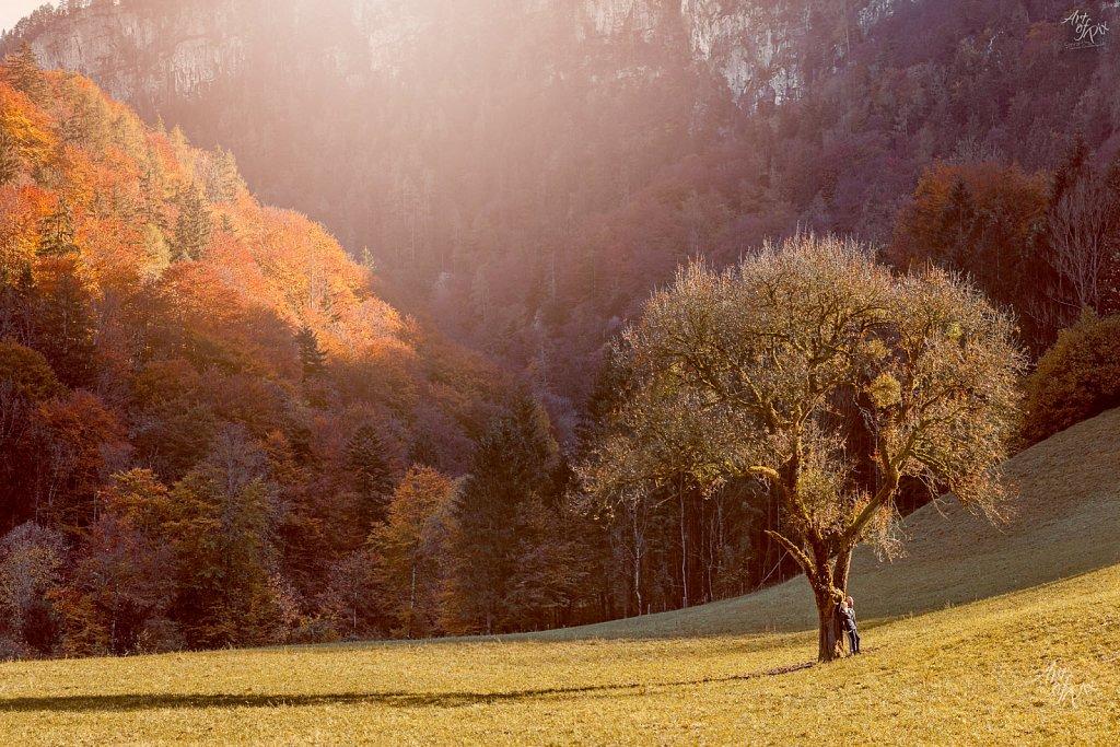 Landschafts Fotografie