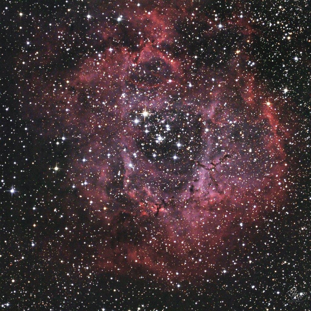 """NGC2244 - Rosennebel"""